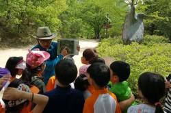 [경북][주왕산국립공원] 자연경관해설(미래세대를 위한 자연 속 생태체험교실)