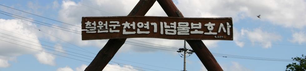한국조류보호협회철원지회