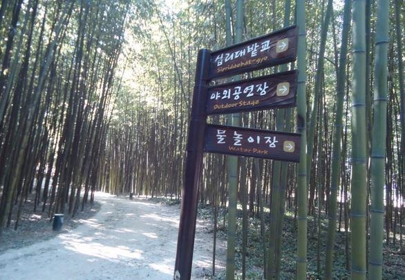 울산생명의 숲