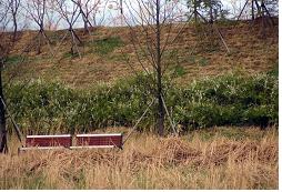 달성산업단지근린공원