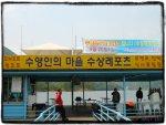 수상레포츠-수영인의 마을