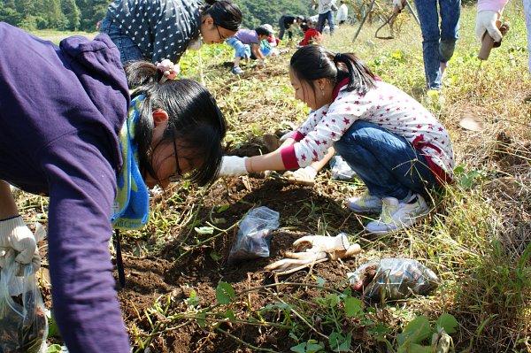 용암리 녹색농촌체험마을
