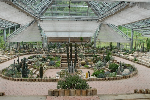 양구생태식물원