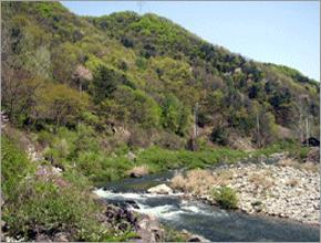 양평 생태산촌마을