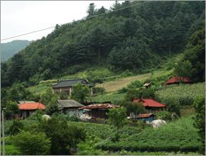 양평 소리산마을