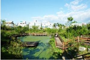 두꺼비생태공원2