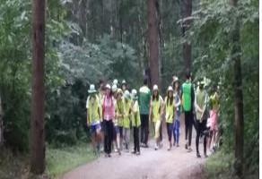 097_체육_국립청태산자연휴양림 숲 속 친구와 함께 놀기
