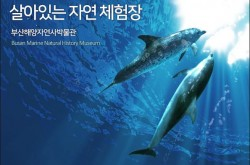 부산해양자연사박물관
