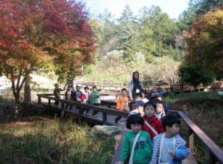유명산 숲학교