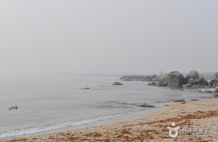 사천진해변(사천뒷불해수욕장)