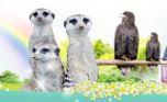청주랜드 동물원