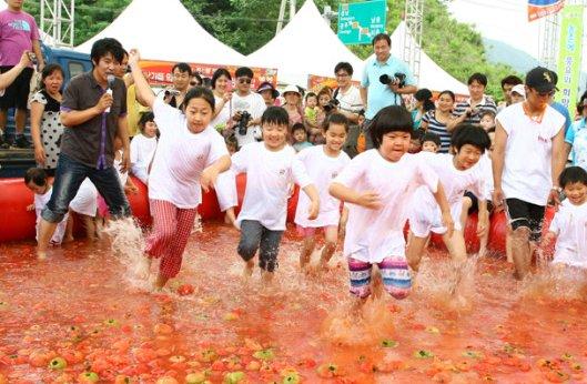 퇴촌토마토축제
