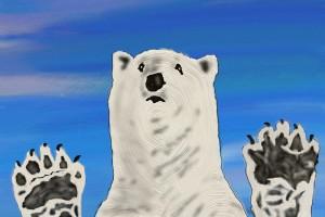 polar-bear-1960873_960_720