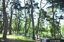 한밭수목원 전경