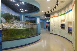 태화강 생태관 전시실