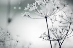 꾸미기(10월_썸네일)_이슈캘린더(9~12월)_최종_28