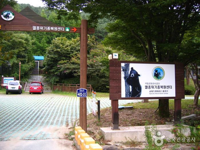 국립공원종복원센터