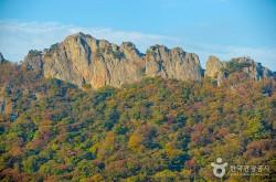 내장산국립공원사무소