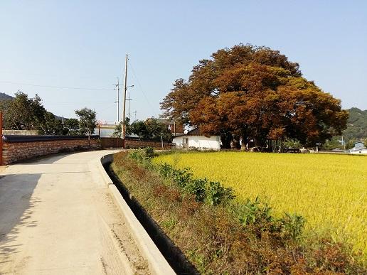 영광군용암리녹색농촌체험마을