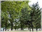 중계근린공원