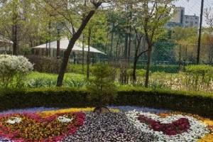 천호근린공원