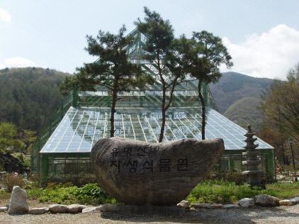 유명산자생식물원