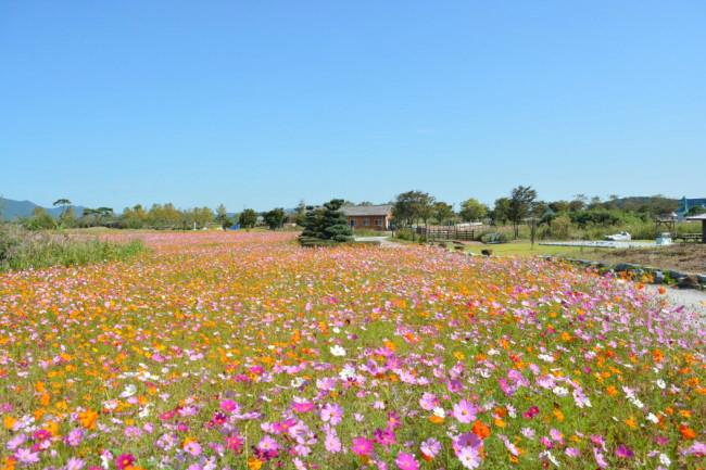 줄포만갯벌생태공원