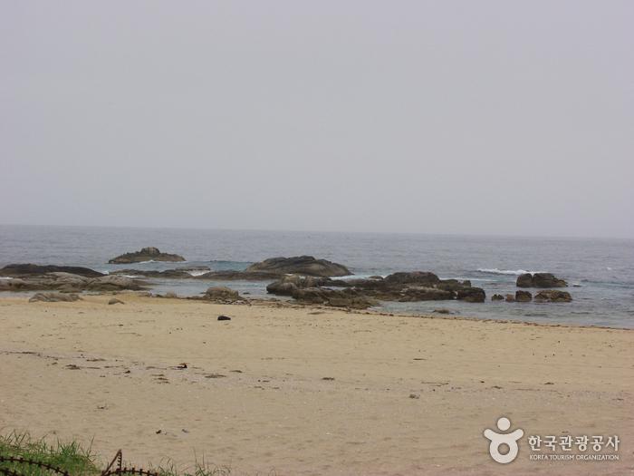 문암1리해변(자작도)