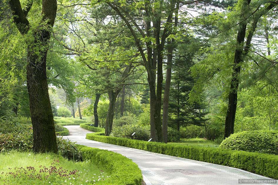 국립수목원 (광릉숲)