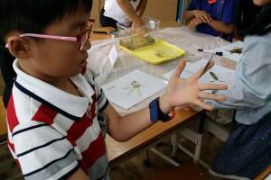 수서곤충 체험