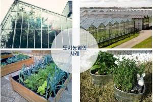 지속가능농업발전(중학)