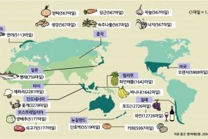 지속가능농업발전(초등)