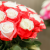 고양국제꽃박람회