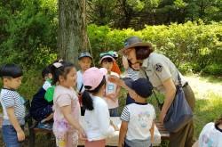 7. 꼬미와 함께하는 도봉산 숲유치원 (2)