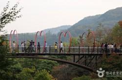 화담숲(출처_한국관광공사)