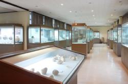 한림대학교 박물관