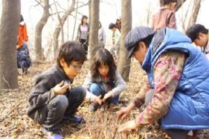 잠자는 숲속의 곤충들