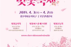 2019 경주벚꽃축제