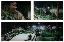 [인천] [인천어린이박물관] 공룡탐험