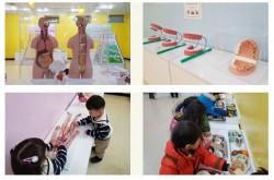 [인천] [인천어린이박물관] 기획전시_소중한 나의몸