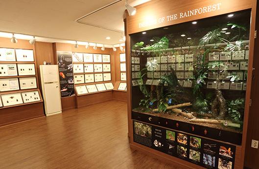 충우 곤충 박물관