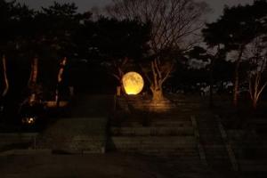 [서울] [창경궁] 궁궐에 내려온 보름달
