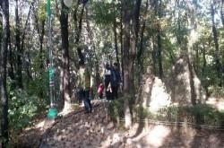 [송파구청] 오금공원 오솔길 탐방