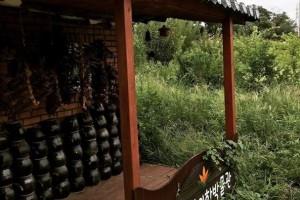 연자약초수목원