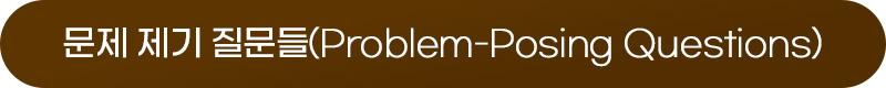 문제 제기 질문들(Problem-Posing Questions)