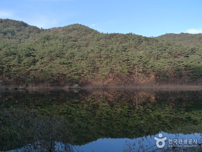 속리산국립공원 (충북)