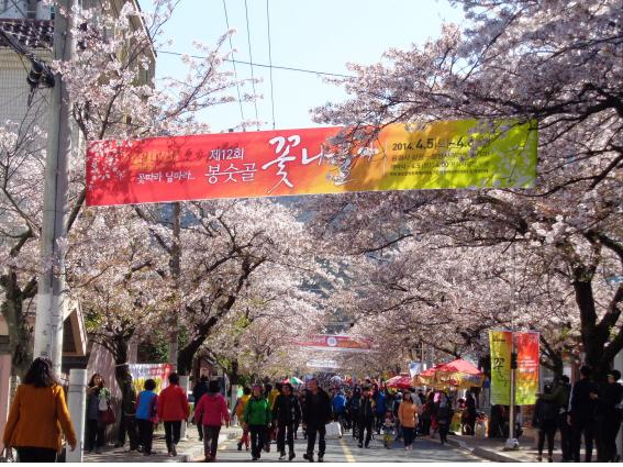 봉숫골 꽃나들이축제