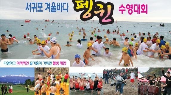 제 16회 서귀포 겨울 바다 펭귄 수영 대회